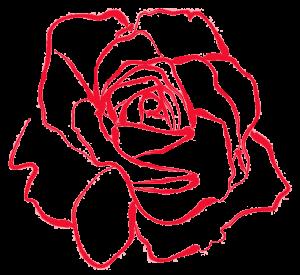 Cafe Rosenrot Rose
